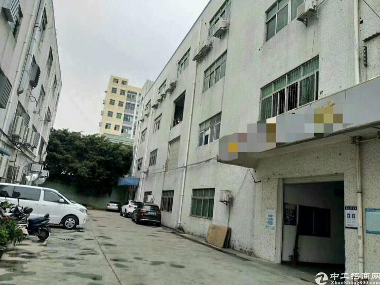 龙华原房东厂房1-4层各1200平,无公摊