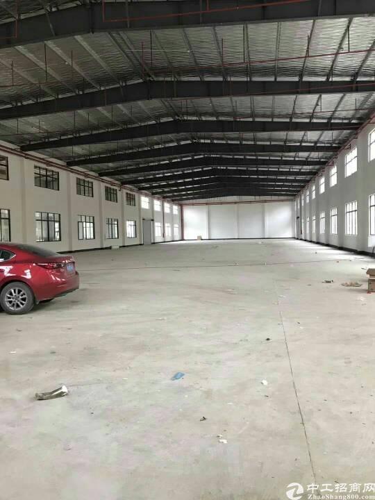 坑梓新出单一层钢结构1800平低价出租