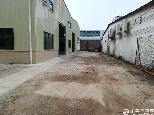 石排全新单一层厂房出租,面积5500方,滴水8.5米,