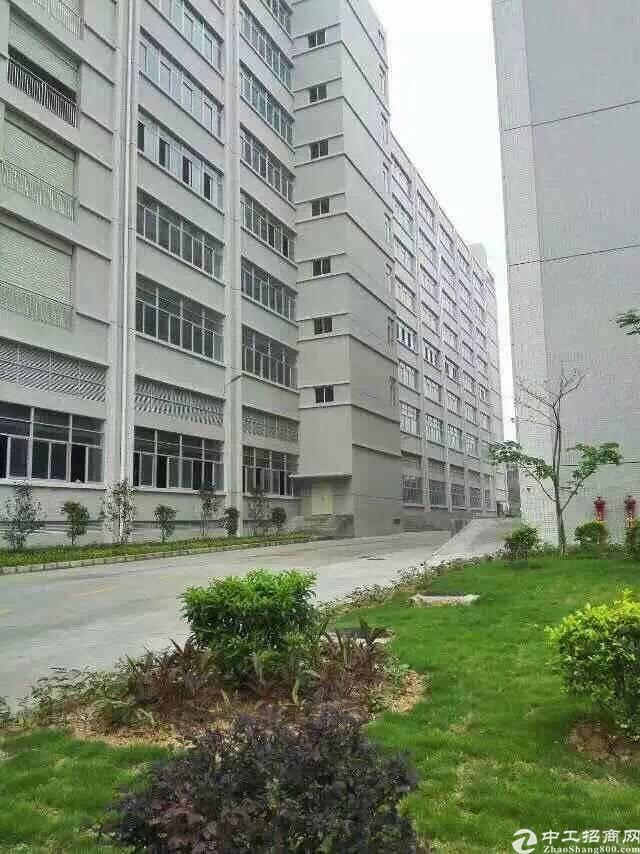 石岩石龙仔新出楼上2300平方红本厂房招租