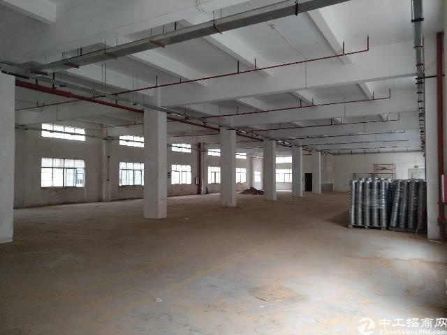 花园式园区独栋厂房出租,面积5400平,百万豪华装修不要转让-图3