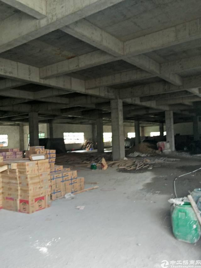 东莞全新标准独院厂房交租