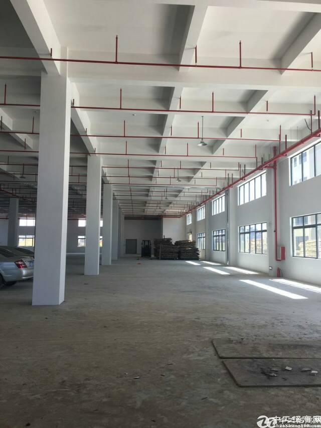 石湾镇原房东厂房12500平方带消防喷淋