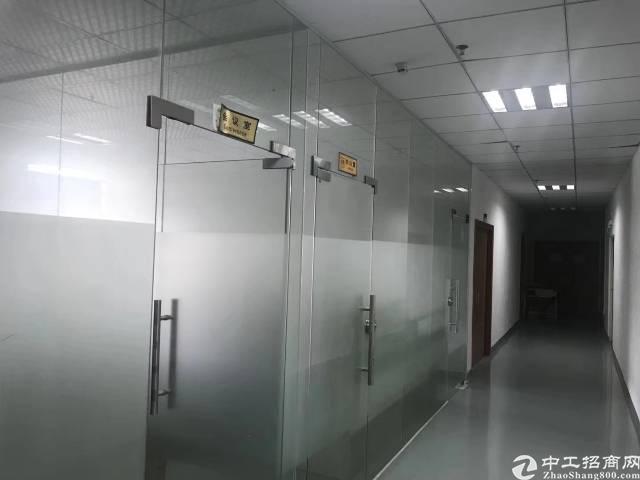 公明新出楼上1300平米带豪华装修办公室前台厂房出租-图2