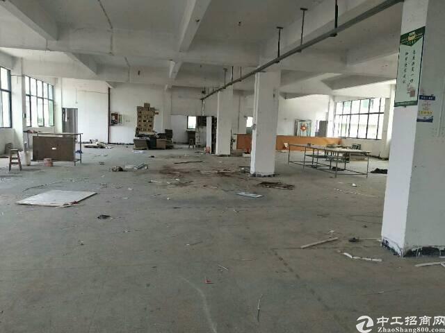 福永凤凰空出带装修1200平方厂房出租