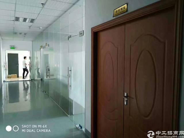 公明新出楼上1300平米带豪华装修办公室前台厂房出租-图4