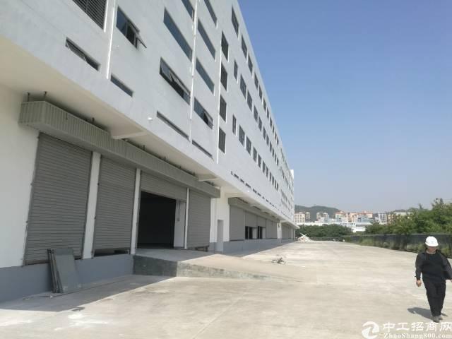独门独院厂房25000平米厂房出租