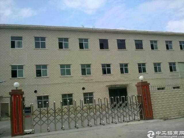 龙岗坪地中心地带一楼厂房300平米出租