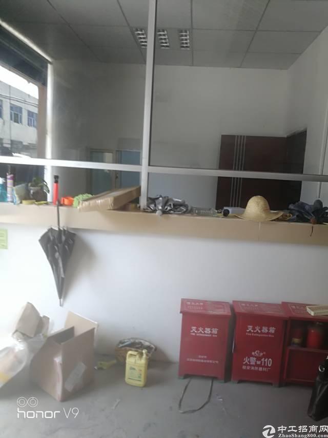 福永新田新出一楼300平米带装修厂房出租