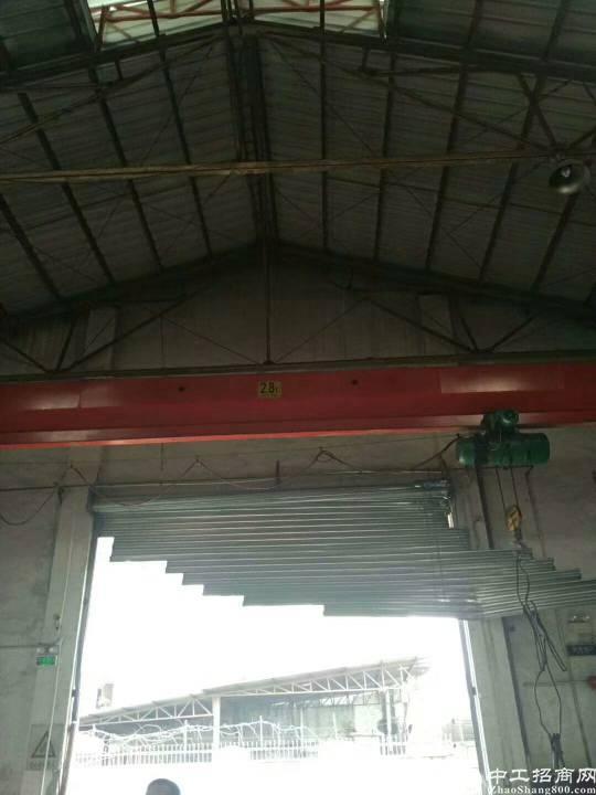 新出2900平方10高钢构厂房出租