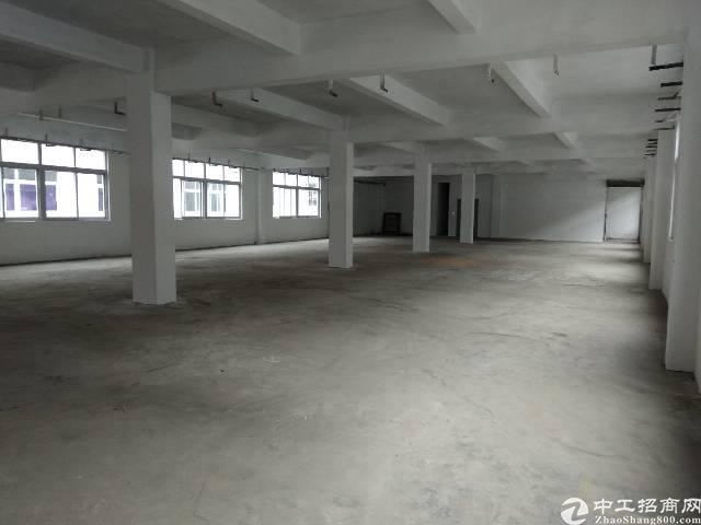松岗精装小面积厂房200至500-图2