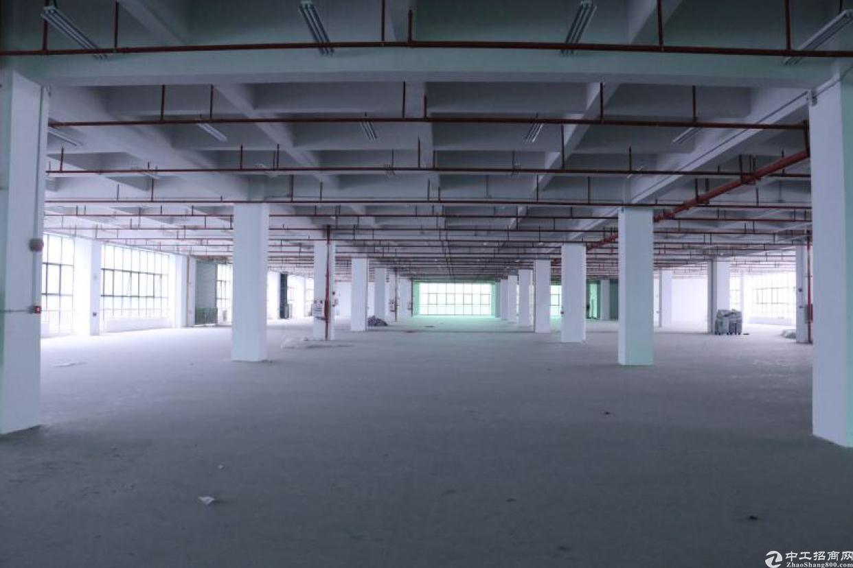 南城主干道二楼1200平方现房原房东出租