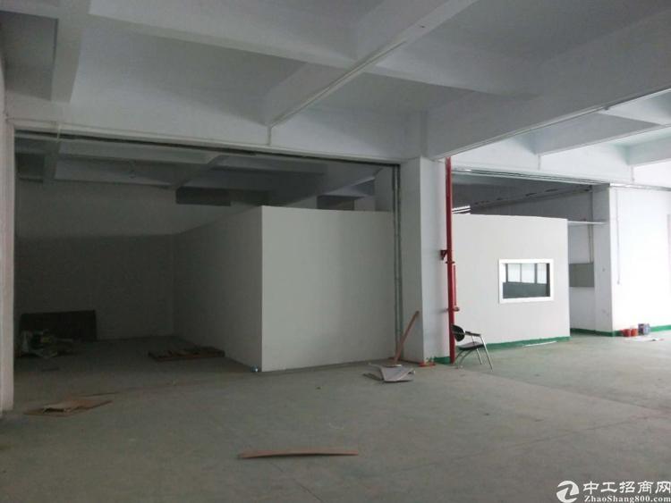光明新出楼上带全新地平漆550平方