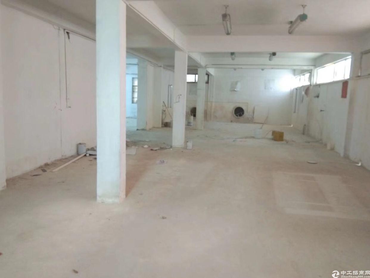 金沙楼上新出800平方带装修厂房出租