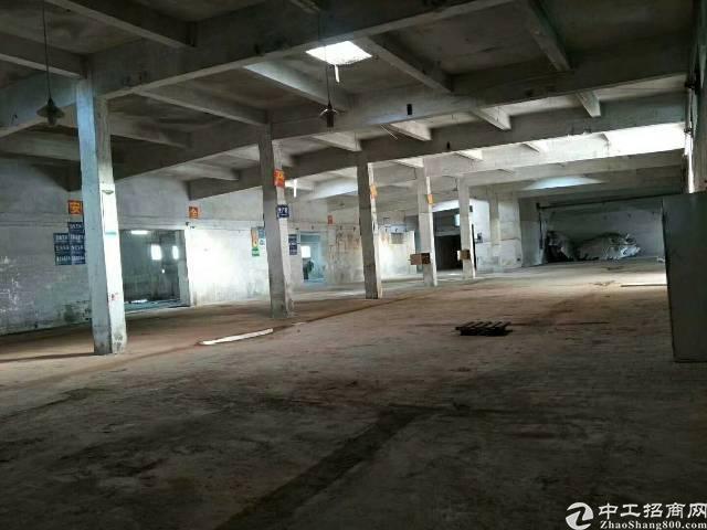 坪山大工业区独栋单一层标准厂房1700平米,滴水6米(如图)-图5