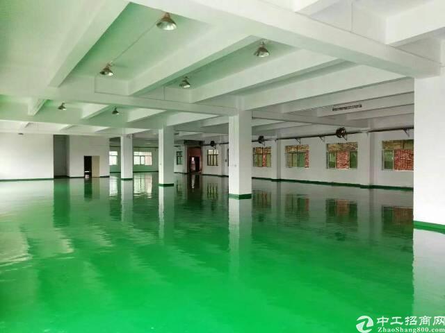 石排镇全新小独院厂房全新地坪漆,精装修办公室,面积4500²