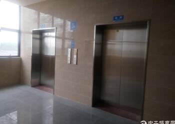 观澜梅观高速出口全新写字楼200平米出租图片5