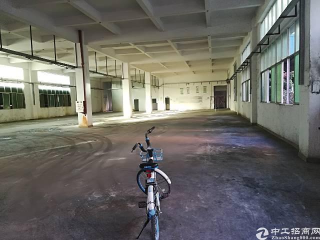 大朗镇象山工业城工业园分租一楼1850平方6米高