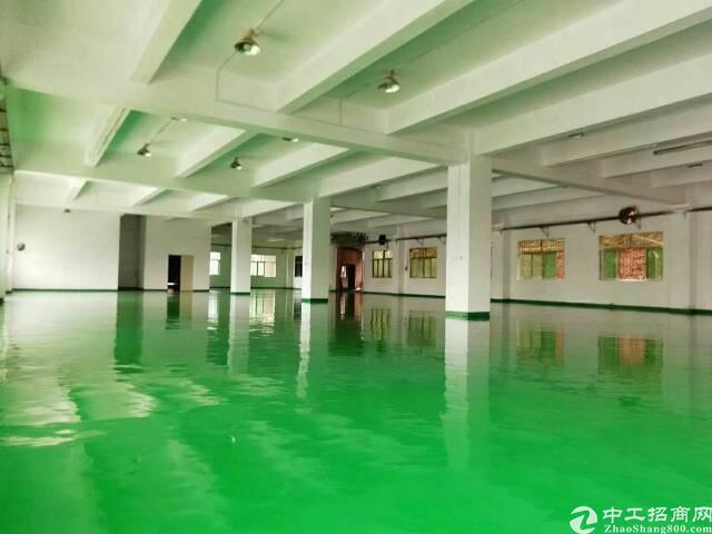 石排镇全新小独院厂房全新地坪漆,精装修办公室,面积4500²-图5