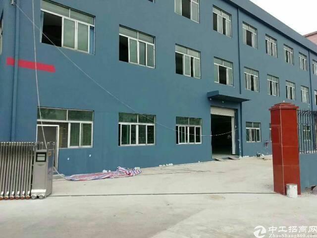 石排镇全新小独院厂房全新地坪漆,精装修办公室,面积4500²-图2