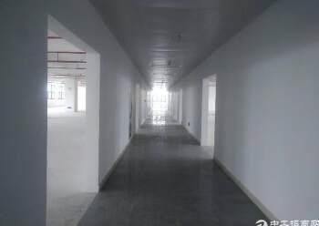 观澜梅观高速出口全新写字楼200平米出租图片4