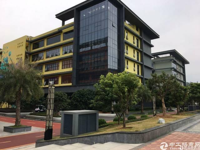 深圳市孵化器龙岗大道边270-500平办公室出租深圳市孵