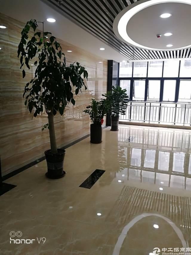 福永塘尾地铁口附近楼上3800平米带豪华装修有无尘车间厂房出