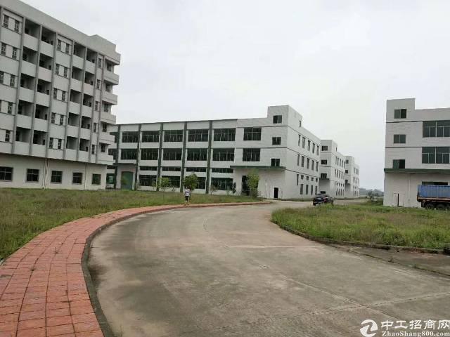 企石出标准厂房单层900平方,净空6米,只租16块 16块。