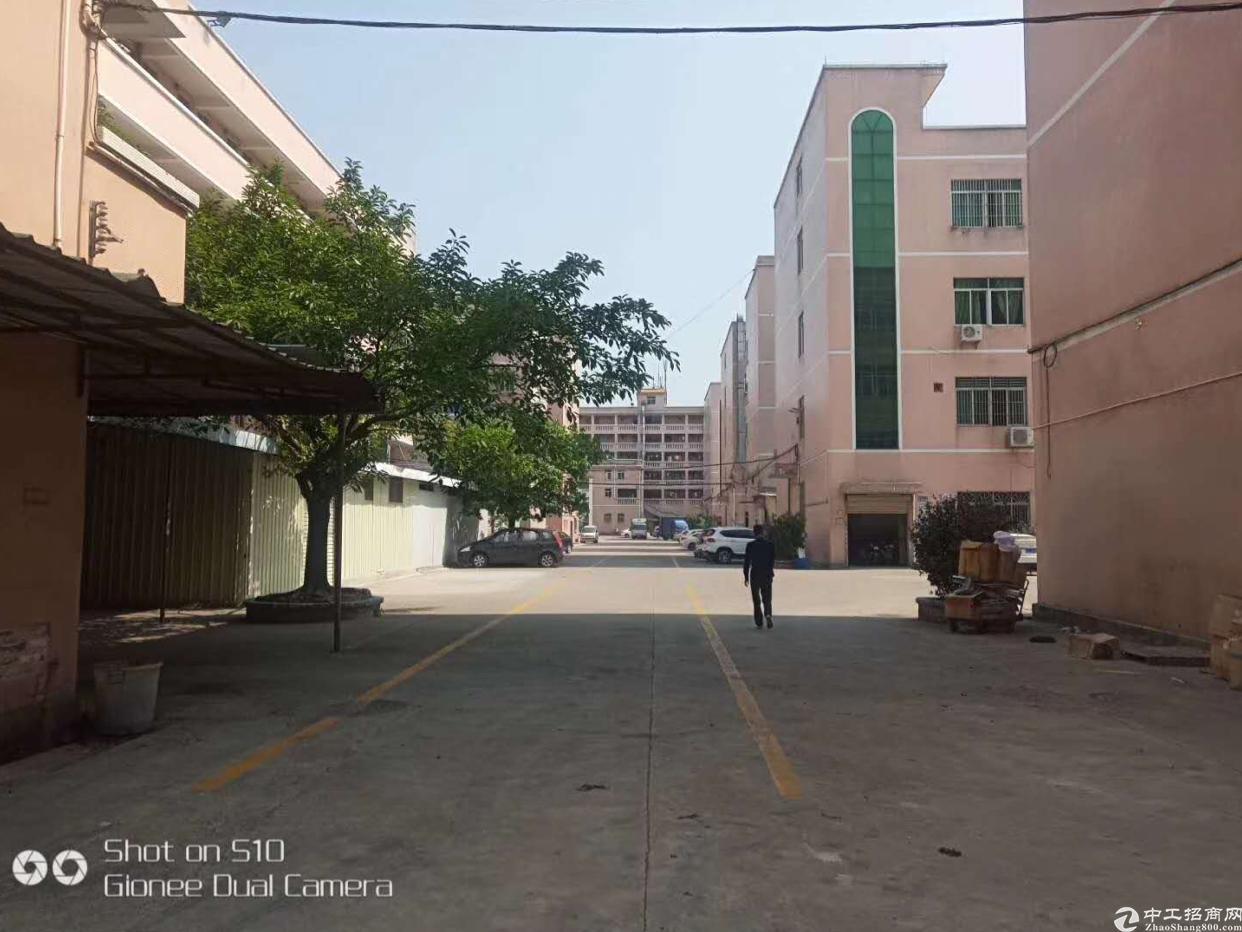 布吉丹竹头厂房楼上150平起租