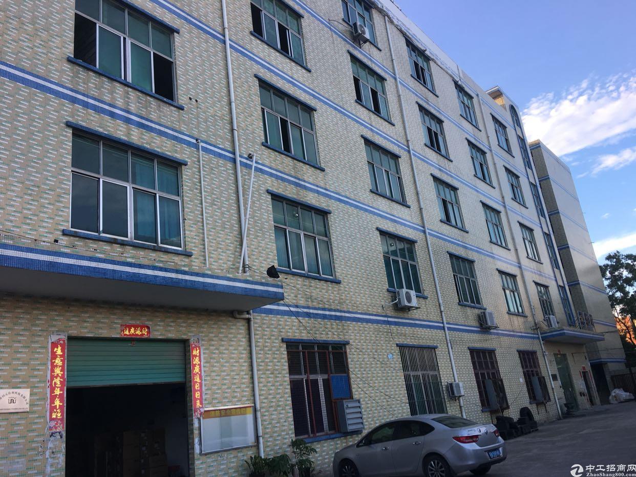 秋长小独院可分层租每层1350平,层高5米-图8