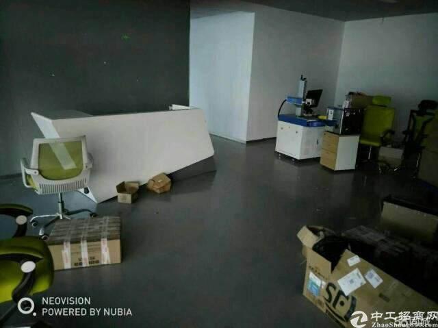 龙岗区坂田街道新出1000平高级写字楼租图片1