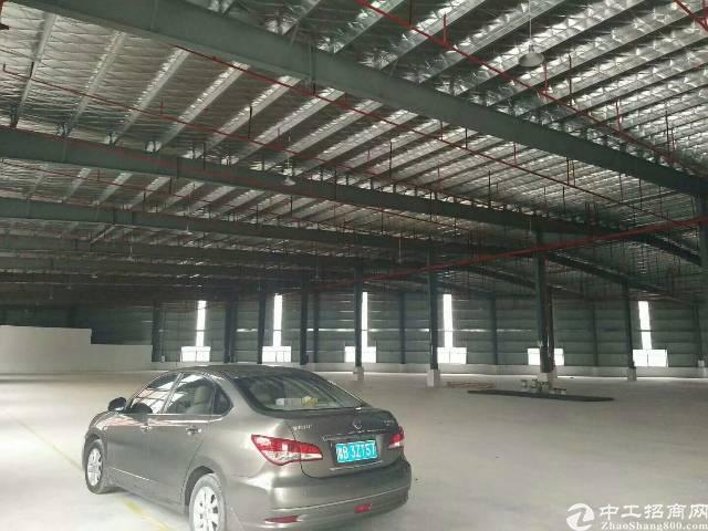 惠州陈江独院钢构20000平