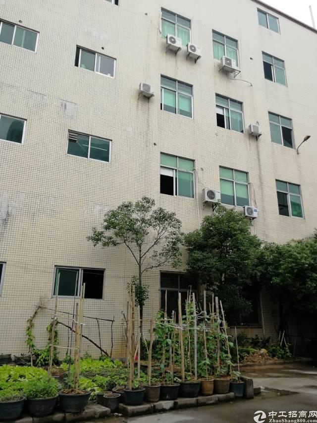 沙井黄埔新出3楼910平方,租金18元每平方,精装修