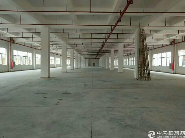 东城区标准厂房一楼出租