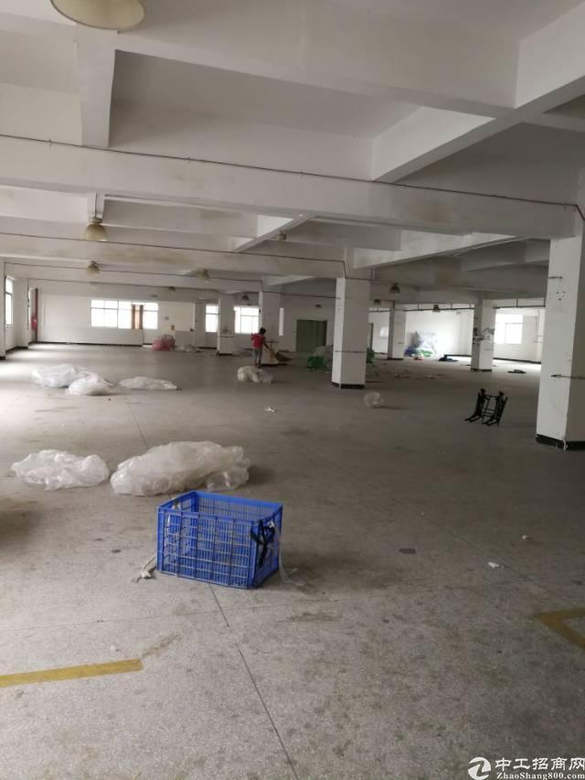 横岗安良三楼整层面积2000平米标准厂房招租