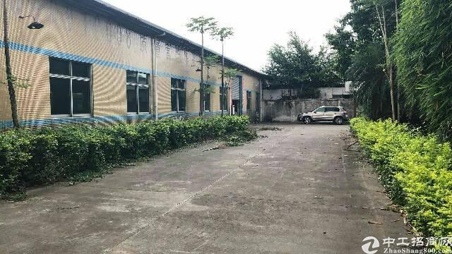 东城新出独门独院单一层厂房1800平