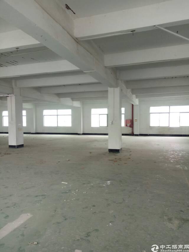 红本独院,坪山区坑梓独院厂房4500平方出租-图2