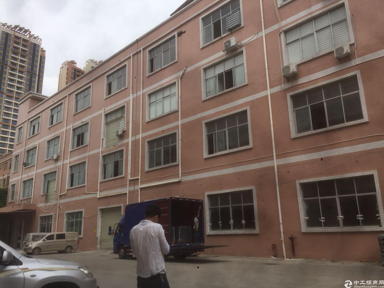 坪山 汤坑工业区新出一楼整层1050平厂房,有红本