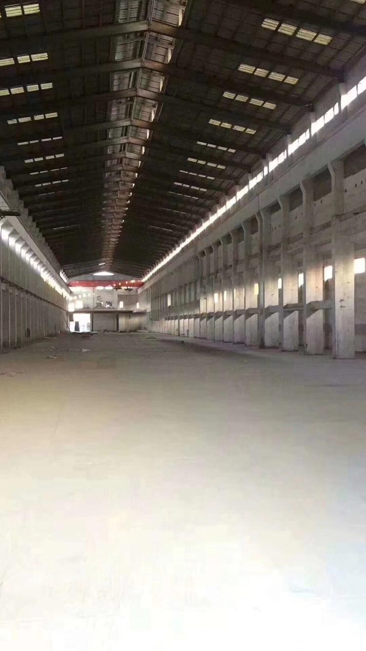 常平新出单一层重工厂房滴水16米高,16T行车两台,水电到位
