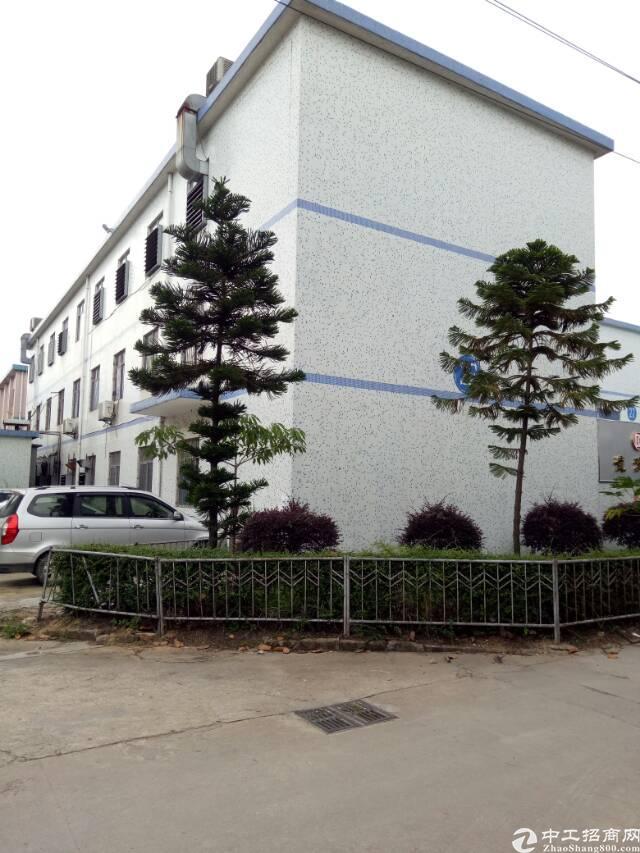 坪山区三洋湖附近独院厂房3200平方招租-图5