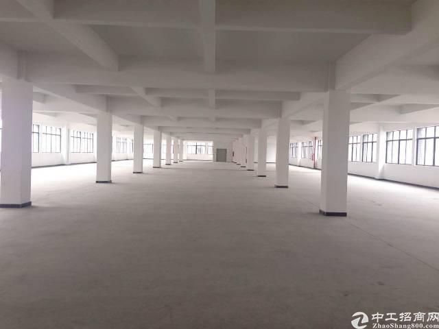 广州增城经济开发区标准厂房出租