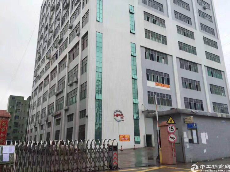 沙井高速路口带豪华装修厂房出租2500平