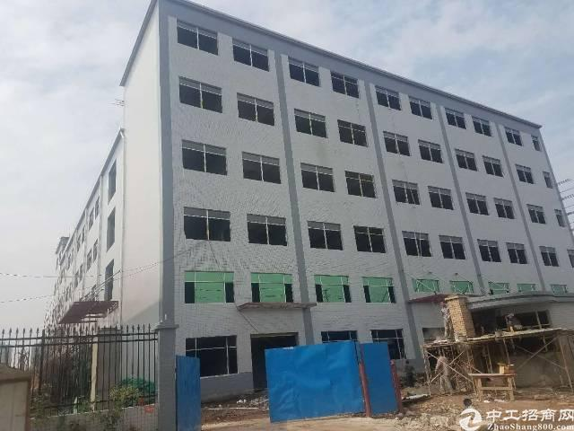 常平镇新出标准厂房4层15000平方,宿舍3000平方出租