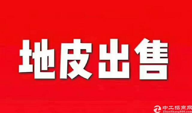 湖工武汉国有工业用地出售