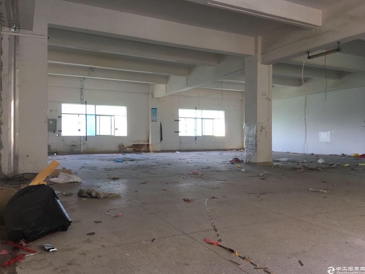 坑梓二楼1200平标准厂房带办公室-图6