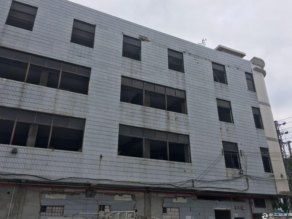 坑梓商业中心整栋寻包租物业