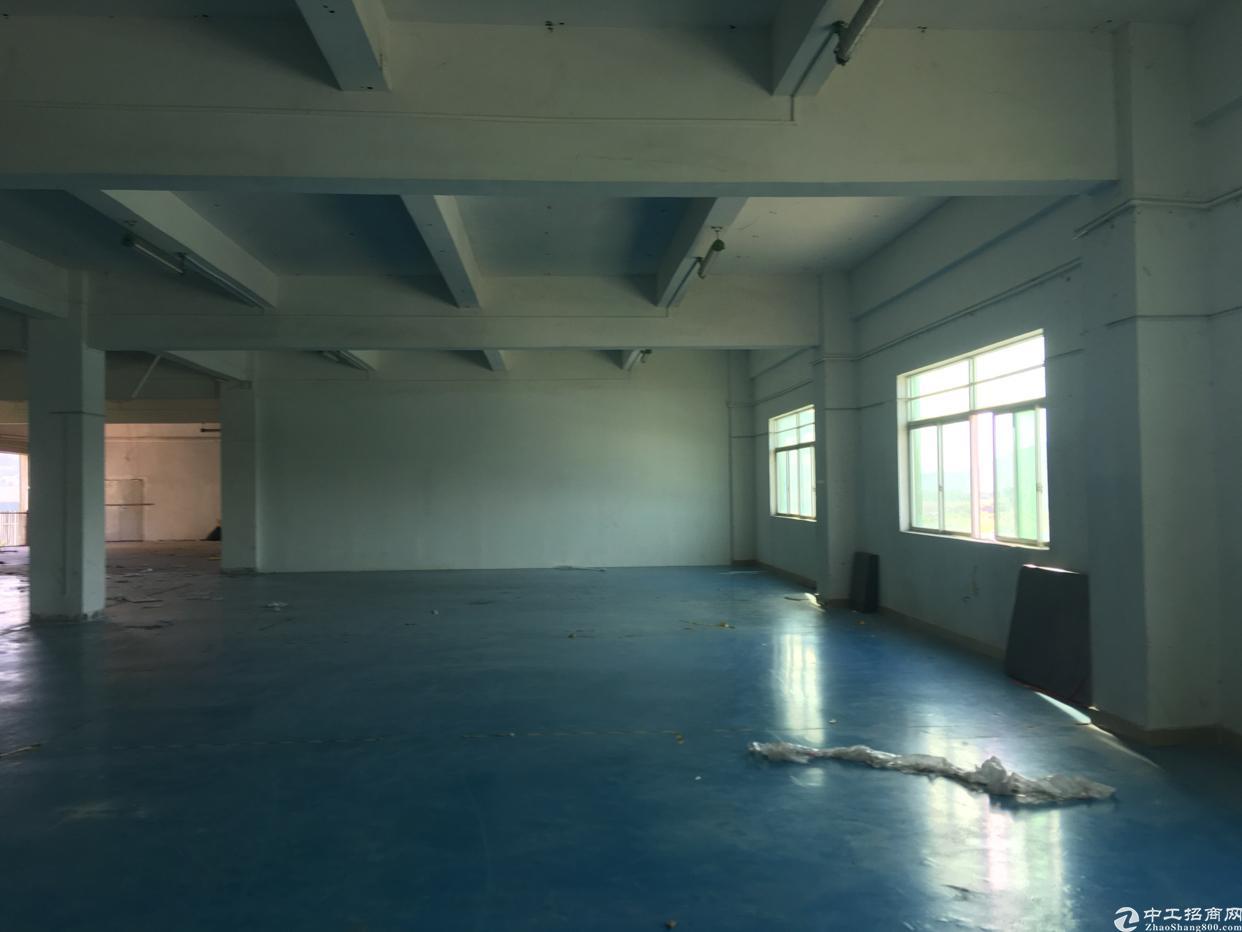 坑梓二楼1200平标准厂房带办公室-图7