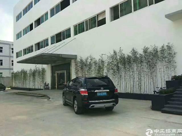 花园式园区独栋厂房出租,面积5400平,百万豪华装修不要转让-图4