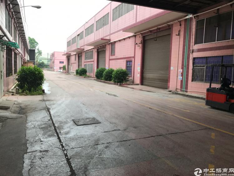 惠州镇隆高田新出厂房一楼4000平