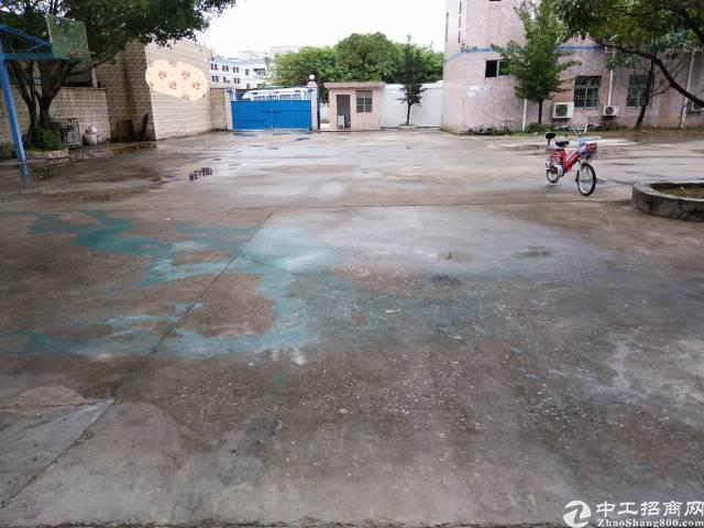 坑梓龙田新出 原房东独门独院钢构厂房700平500平宿舍办公